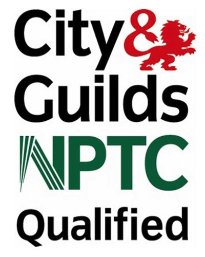 Tree Surgeons in West Sussex city and guilds NPTC qualifed